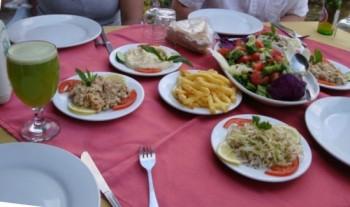 comida arabe - siria