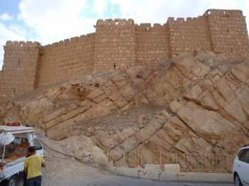 qalaat ibn maan castillo arabe - palmira -siria