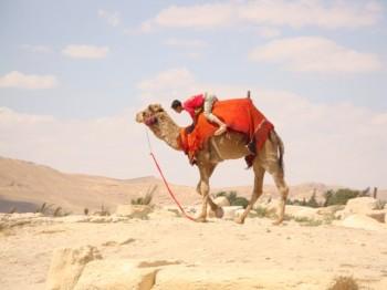 trip around Damascus- Palmira - Syria (6)