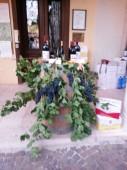 calici di stelle - caliz de vino bajo las estrellas (9)